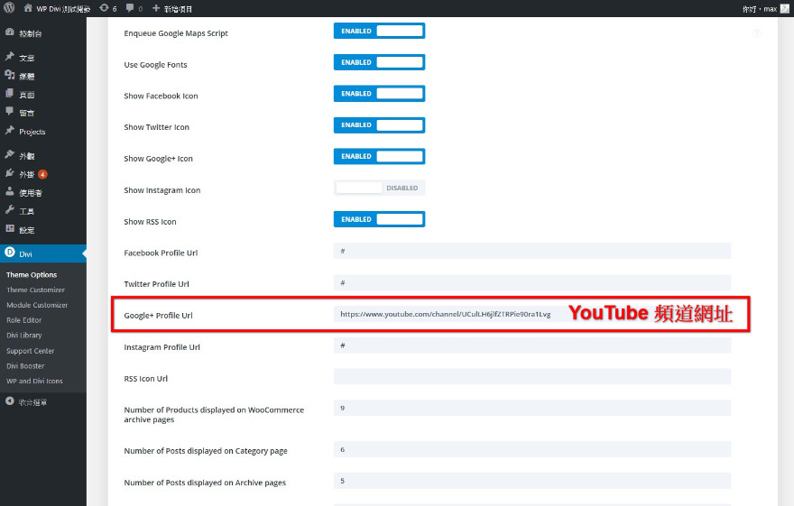 填寫 YouTube 頻道網址